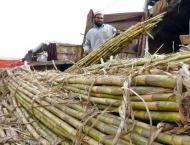Farmers demand increase in sugarcane, wheat prices