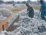 ECC allows withdrawal of duties on imported cotton from January 1 ..
