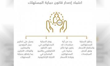 مجلس الوزراء برئاسة محمد بن راشد يعتمد ..