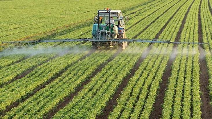 Russian Agriculture Export to Reach $24-25Bln in 2019 - Deputy Minister of Agriculture Elena Fastova