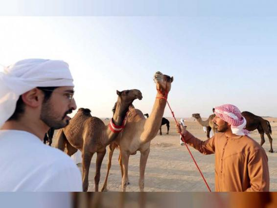 Al Dhafra Festival to showcase cultural and heritage events