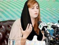 PML-N creating hurdles in establishing Saraiki province: Minister ..