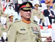 Govt seeks suspension of judgment in army chief's service case ti ..