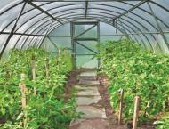Govt releases Rs5,925.588 million under PSDP for agriculture upli ..