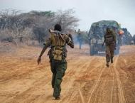 Militia kills 24 people in northeastern DR Congo