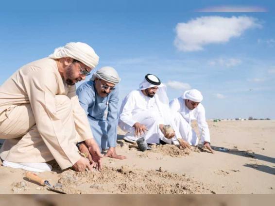 Hamdan bin Zayed participates in mangrove seedlings planting on Al Aryam Island