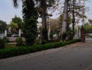 First urban forest established in Faisalabad
