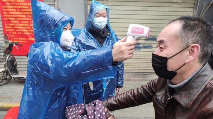 WHO Representative Praises Russia's Coronavirus Fight, Notes High Level of Preparedness