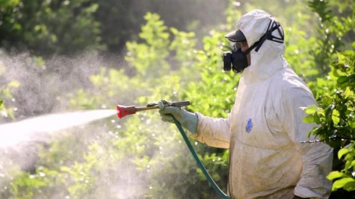 Fumigation spray carried out in different areas of Rawalpindi