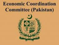 Economic Coordination Committee (ECC) approves four technical gra ..