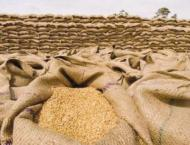 125,500 bags of wheat recovered in Jalalpur Bhattian