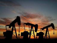 Russian, Saudi Energy Ministers Discuss Oil Market Situation - Ru ..