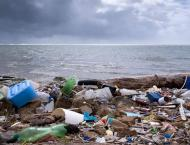 COVID-19-Linked Ocean Pollution Risks to Become Global Problem -  ..