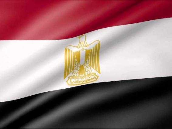 وزير الخارجية المصري يبحث ومسؤول اوروبي تطورات سد النهضة