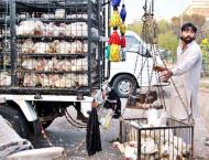 Sukkur administration reviews fixation of chicken price