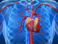 COVID-19 May Not Only Affect Lungs But Also Heart - European Soci ..