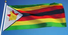Six detained Zimbabwe opposition figures freed on bail: lawyers
