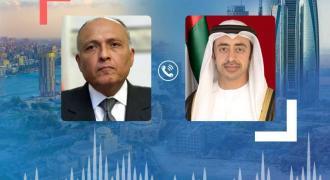 Abdullah bin Zayed, Egyptian FM review regional developments