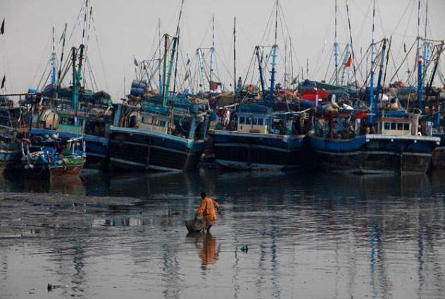 Ministry of Maritime Affairs, FAO conduct a webinar on safety of fishermen