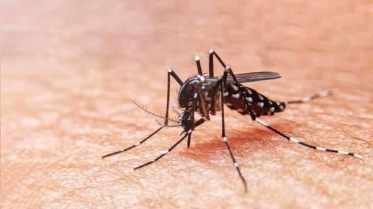 Distt admin gears up dengue surveillance