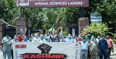 UVAS observes 'Youm-e-Istehsal', express Solidarity with oppressed Kashmiri people