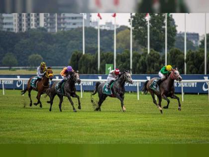 """""""شدوان الخالدية"""" يتوج بكأس زايد للخيول العربية الأصيلة في بولندا"""