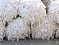 Spot rates of cotton (Crop 2020 21)