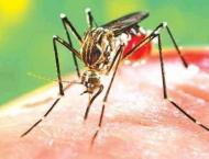 Carelessness not to be tolerated in anti dengue measures: commiss ..