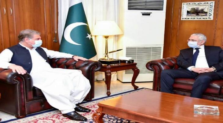 سفیر مصر لدي اسلام آباد یلتقی وزیر خارجیة باکستان شاہ محمود قریشي