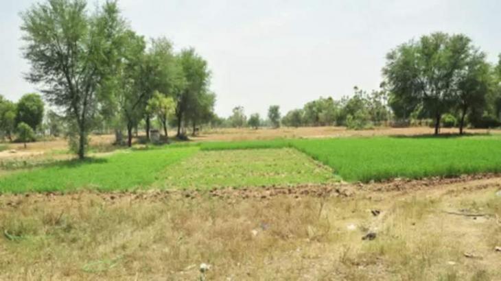 Two kanals, 8 marla Govt. land retrieved: DC