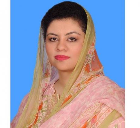 Kanwal Shauzab calls for collective efforts to end violence against women