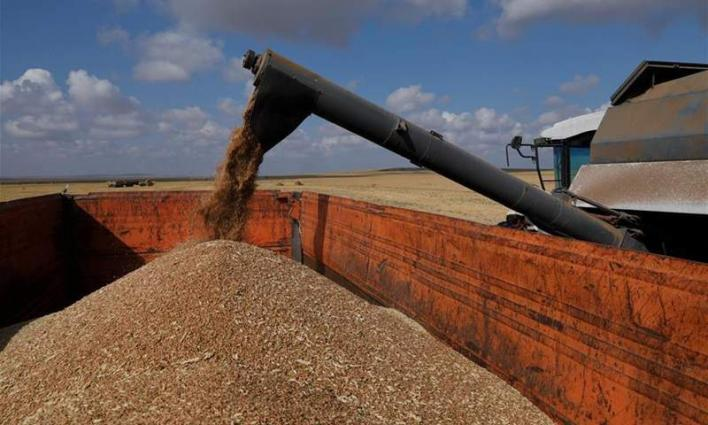 Kazakh agricultural exports to China soar 15 pct in H1