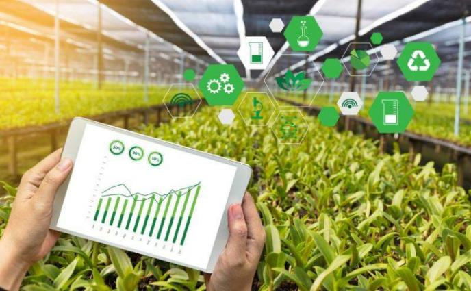 Technology based farms to be created to promote export-based agriculture