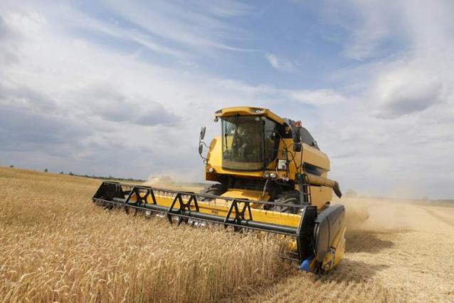 Russia's Economy Ministry Predicts Grain Harvest of 137.5 Mln Tonnes by 2023