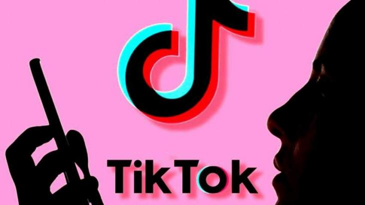 TikTok Launches Guide on US Elections to Protect Users From Misinformation - Statement