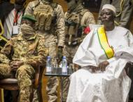 Egypt Plans to Help Mali Return Place in AU After Being Isolated  ..