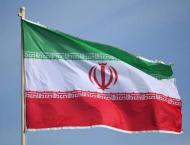 Data on Injured Lawmakers in Road Accident in Southeastern Iran U ..