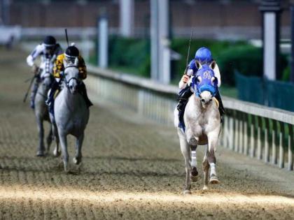 12 خيلاً تشارك في لقاء الأقوياء بالجولة الأمريكية لكأس رئيس الدولة للخيول العربية الأصيلة