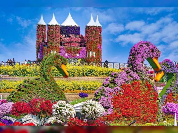 Dubai Miracle Garden set to welcome visitors on 1st November