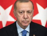 Erdogan's son-in-law resigns as finance minister: Instagram post ..