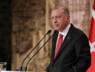 Erdogan Not Ruling Out Other Countries' Involvement in Karabakh C ..