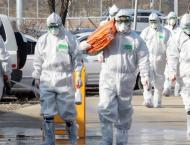S. Korea Confirms First Outbreak of Bird Flu Among Poultry in 202 ..
