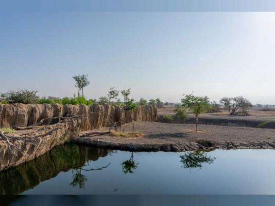 Sharjah Ruler inspects progress of Sharjah Safari in Al Dhaid