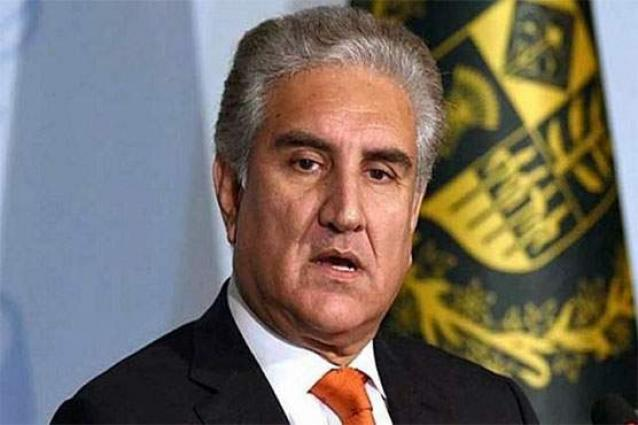 FM Qureshi meets Niger Prime Minister; reiterates Pakistan's support in various sectors