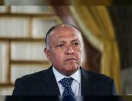 Egyptian, Russian FMs discuss regional issues