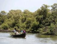 Depletion of mangroves: ecosystem posing threat to sea communitie ..