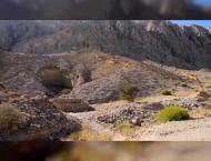 WAM REPORT : Jebel Hafeet, Jebel Jais, Hatta Dam, Al Rafisah Dam  ..