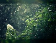 Fifth International Rain Enhancement Forum debates key water secu ..
