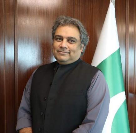 Dutch Ambassador calls Ali Haider Zaidi