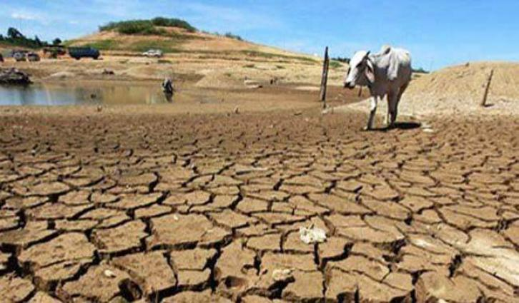 Pakistan persistently among top 10 countries affected due to climate change